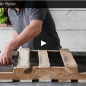 Come realizzare un giardino verticale con un pallet video tutorial blog di deni niagara - Come realizzare un giardino verticale ...